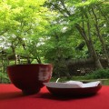 新緑の京都 – Season of new green leaves